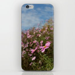Pitville Meadow iPhone Skin