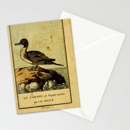 canard longue queue ou le pilet (Fr)6 Stationery Cards