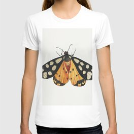 Butterfly from Insects and Fruits (1660-1665) by Jan van Kessel T-shirt
