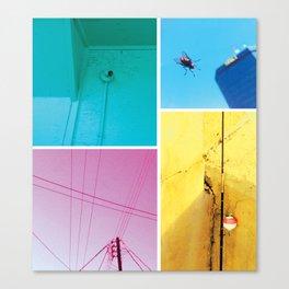 florida noir 001 Canvas Print