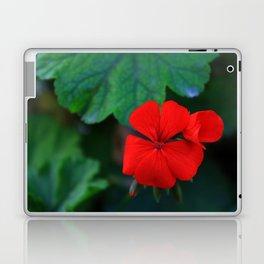 ROY Laptop & iPad Skin