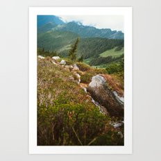 Beginning of the Cascade River Art Print