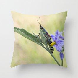 grasshopper  close up Throw Pillow