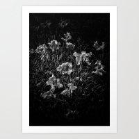 Backyard Flowers In Black And White 23 Art Print