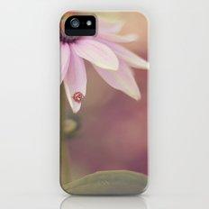 Ladybug Love Slim Case iPhone (5, 5s)