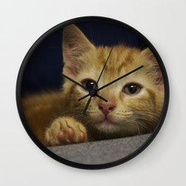 Pondering Kitten Wall Clock