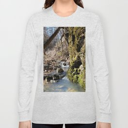 Alone in Secret Hollow with the Caves, Cascades, and Critters, No. 6 of 21 Long Sleeve T-shirt