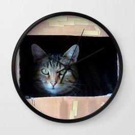 Cat In The Box Wall Clock