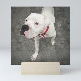 TSUKi (shelter pup) Mini Art Print