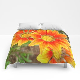 Vibrant Yellow and Vermillion Gazania Rigens Flower Comforters