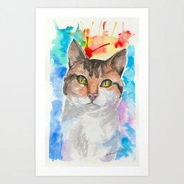 A Cat's eyes Art Print