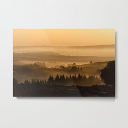 Foggy Forest Metal Print
