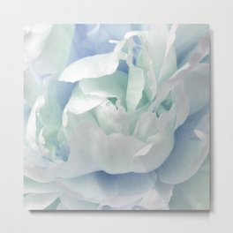 Peony in Blue White Metal Print