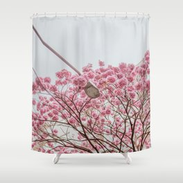 flower photography by Gláuber Sampaio Shower Curtain