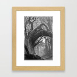 Enchanted Woods Secret Grove Magical Woodland Ancient Trees Bending Branch Forest Vibes Framed Art Print