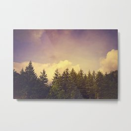 North Wilderness Metal Print