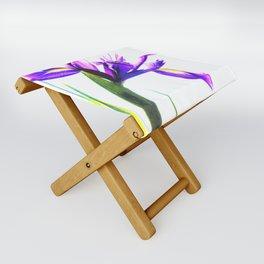 Iris Illustration Folding Stool