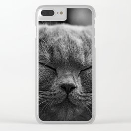 British Shorthair Cat Clear iPhone Case