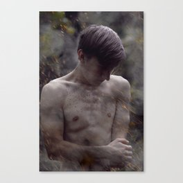 Wounded Canvas Print