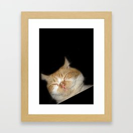 Funny Sleeping Cat Framed Art Print