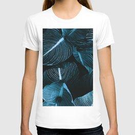 Unbridled - teal T-shirt