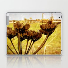 End of summer is near Laptop & iPad Skin