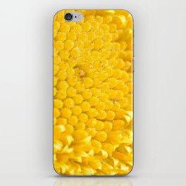 Yellow Daisy iPhone Skin