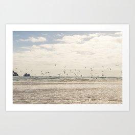 Seagulls feeding frenzy Art Print