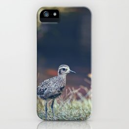 Kaneohe Bird iPhone Case