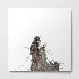 Great grey weather Metal Print