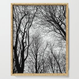 Tree Silhouette Series 6 Serving Tray