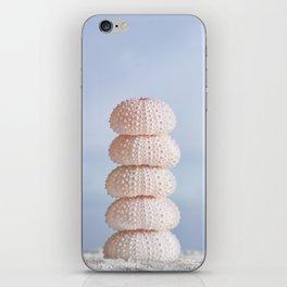 Pink sea cairn ocean urchins iPhone Skin