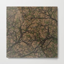 Desert Brown Hunting Camo Pattern Camouflage Metal Print
