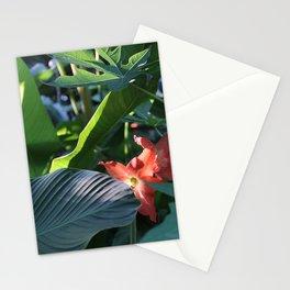Jungle Brush Stationery Cards