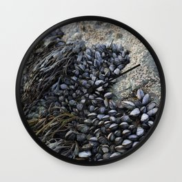 Mussel Bed on Ocean Weathered Rocks Wall Clock