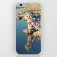 El reflejo iPhone & iPod Skin