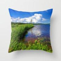 beaver Throw Pillows featuring Beaver Brook by Nicolas Raymond