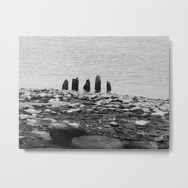 Five Fingered Metal Print