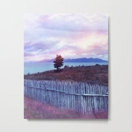 Sunset and lone tree Metal Print