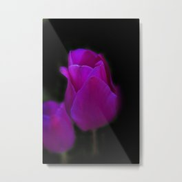 blossoms on black background -01- Metal Print