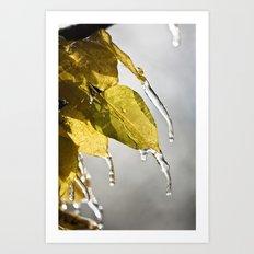 Dripping Ice Art Print