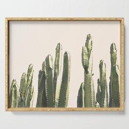 Vintage Cactus Desert  Serving Tray