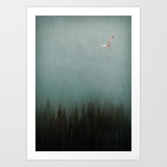 Look to the North Art Print