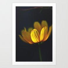 Golden Glow Art Print