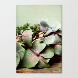 nostalgic blossoms Canvas Print