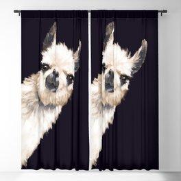 Sneaky Llama in Black Blackout Curtain