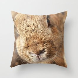 Rabbit Whiskers Throw Pillow