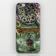 08 iPhone & iPod Skin