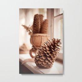 Large old dried cones on windowsill Metal Print