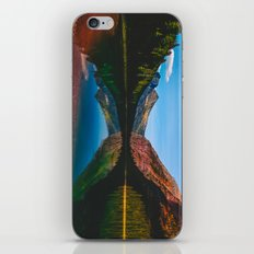 Somewhere in the Rockies iPhone & iPod Skin
